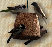 Bird seed bells make easy gifts for bird lovers