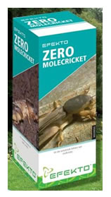 Get rid of Mole crickets now