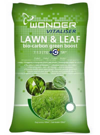 Boost lawn colour now