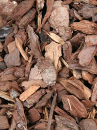 Bark chips make for long lasting Mulch