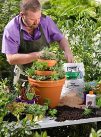 Use Herb Mix as a ready to grow soil
