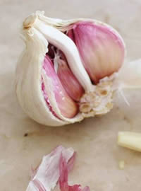 Plant your garlic sets in as much sun as possible