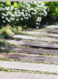 DIY your own water permeable living pathway