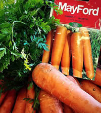 Carrots are easy to teach kids how to grow