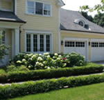 Boxwood used as an evergreen border