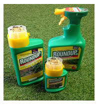 Roundup kills all weeds