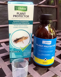 Plant Protector sorts out the summer bugs