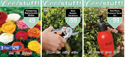 Latest Gardening Promotion At Eckards